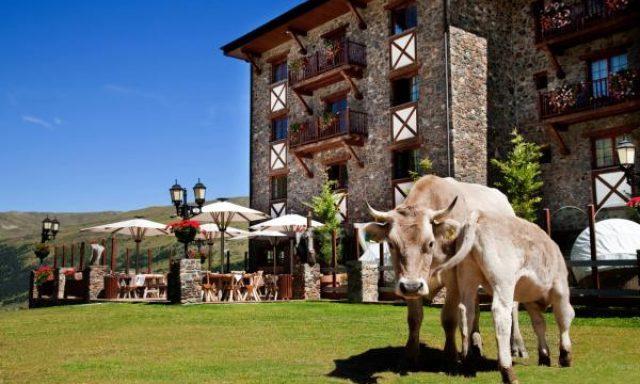 HOTEL GRAUROIG