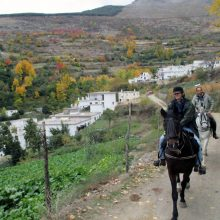 RIDING ANDALUCIA